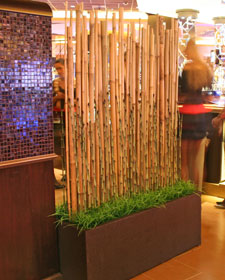 Bamboo Divider Screen Home Ideas