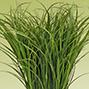 Artificial & Preserved Grasses