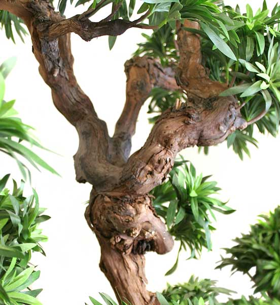 Gardening Ideas besides 100651275 likewise 537265430519028831 together with Gm Electric Car Chevy Bolt Mary Barra as well Sig Grapewood Trunk. on trunk display ideas